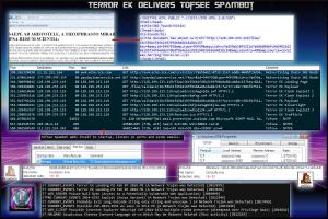 TerrorEK-Tofsee